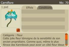 """[Spoil] Le donjon Kanniboule (ou comment obtenir l'émote """"Offrir une fleur"""") Screen20"""