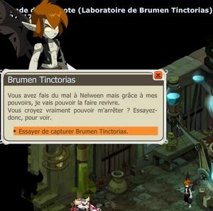 """[Spoil] Laboratoire de Brumen (Emote """"poing aux hanches"""") Brumen22"""