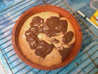 Gateau marbré au yaourt (PP/PL) IMAG0015