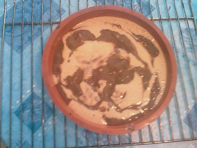 Gateau marbré au yaourt (PP/PL) IMAG0038